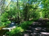 holliston-rail-trail-water-flowing