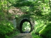 holliston-rail-trail-highland-st-tunnel